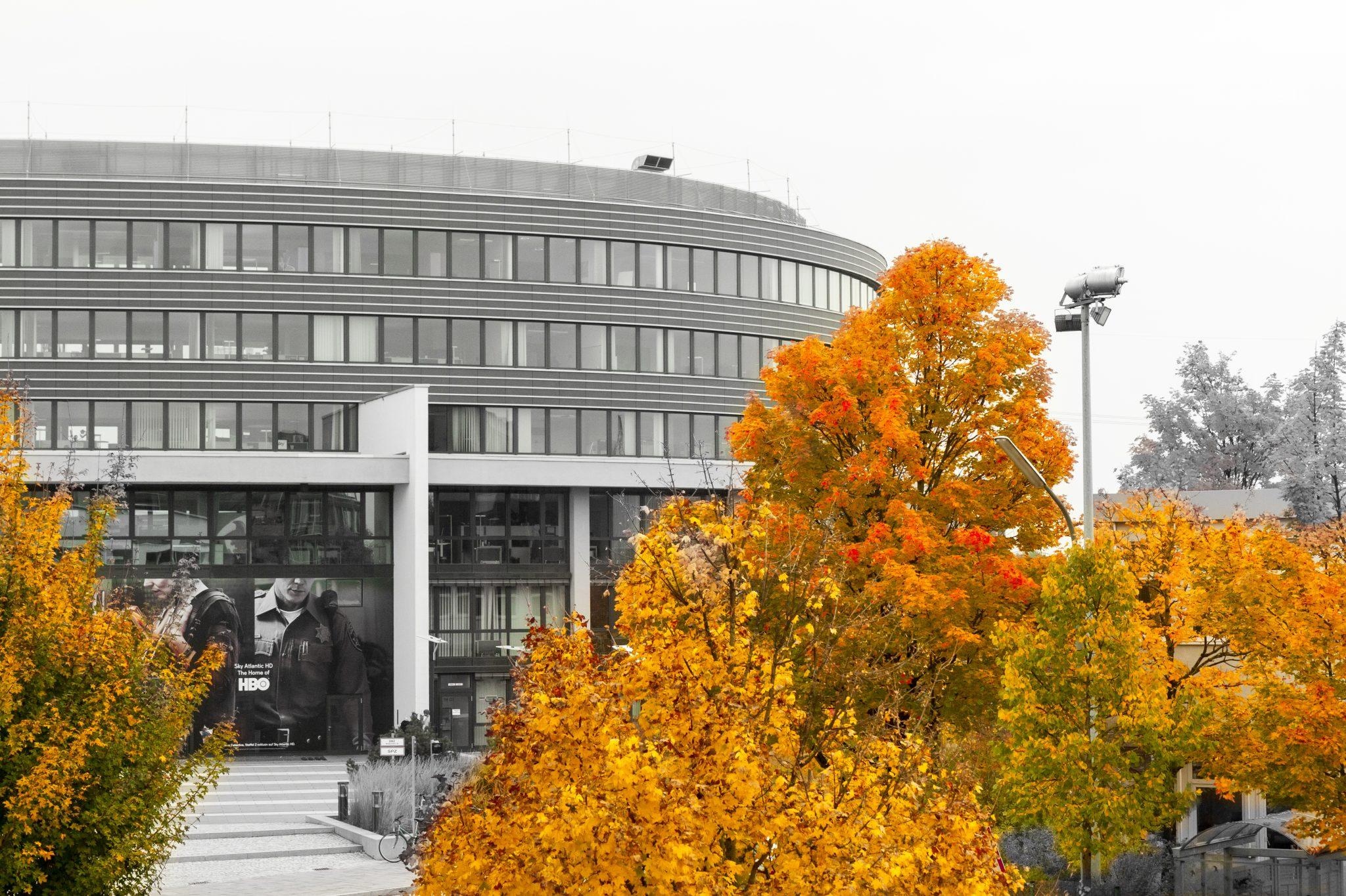 Herbst in Unterföhring